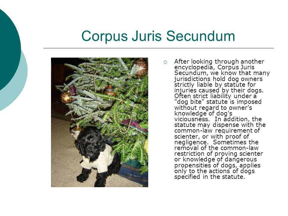 Corpus Juris Secundum  After looking through another encyclopedia, Corpus Juris Secundum, we know that many jurisdictions hold dog owners strictly liable by statute for injuries caused by their dogs.