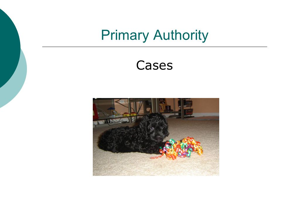 Primary Authority Cases