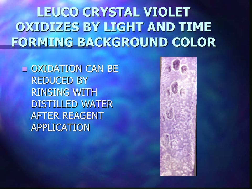 LEUCO CRYSTAL VIOLET OXIDIZES BY LIGHT AND TIME FORMING BACKGROUND COLOR OXIDATION CAN BE REDUCED BY RINSING WITH DISTILLED WATER AFTER REAGENT APPLICATION OXIDATION CAN BE REDUCED BY RINSING WITH DISTILLED WATER AFTER REAGENT APPLICATION