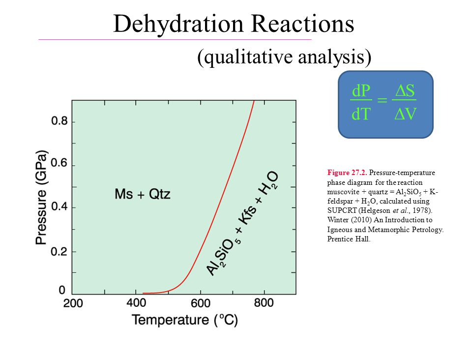 Dehydration Reactions (qualitative analysis) dP dT S V    Figure 27.2.