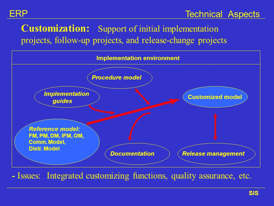 ERP SIS Technical Aspects Customization: Support of initial implementation projects, follow-up projects, and release-change projects - Issues: Integra