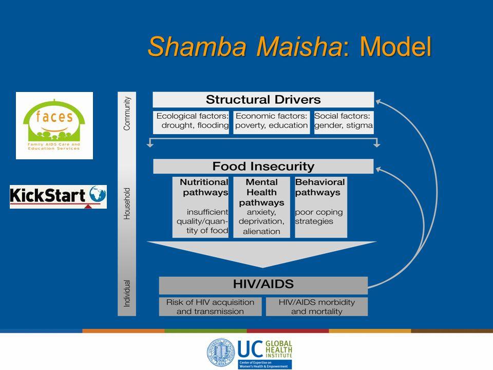 Shamba Maisha: Model