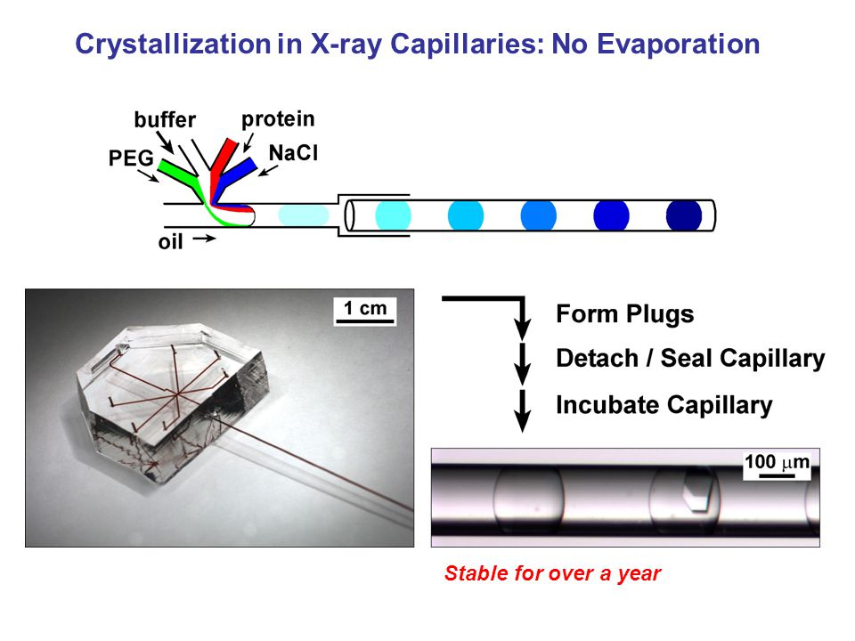 Crystallization in X-ray Capillaries: No Evaporation Stable for over a year