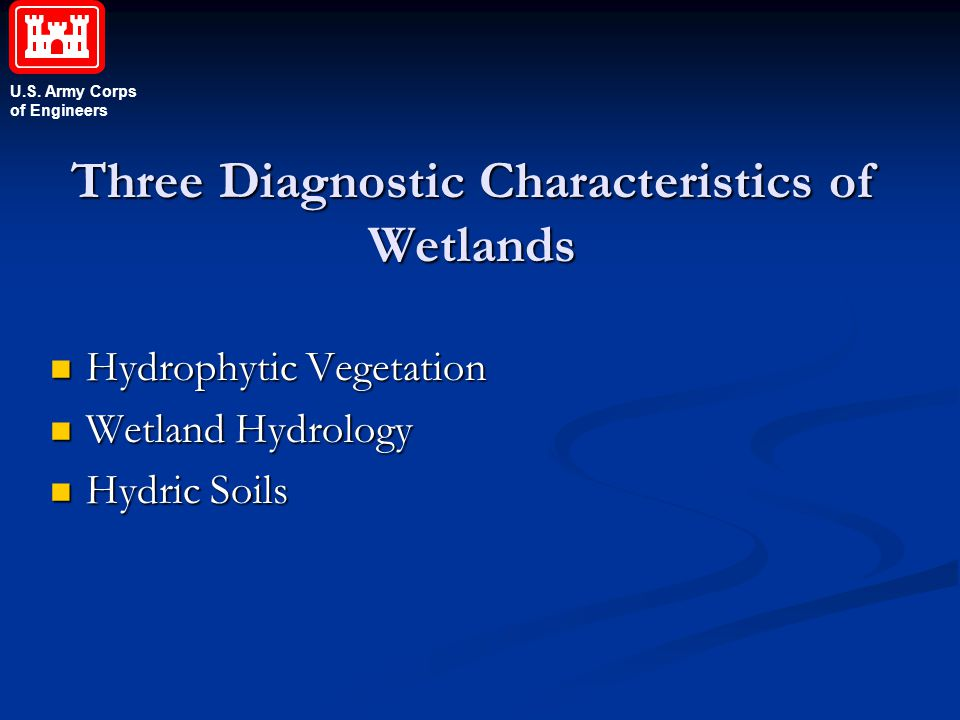 U.S. Army Corps of Engineers Three Diagnostic Characteristics of Wetlands Hydrophytic Vegetation Hydrophytic Vegetation Wetland Hydrology Wetland Hydr