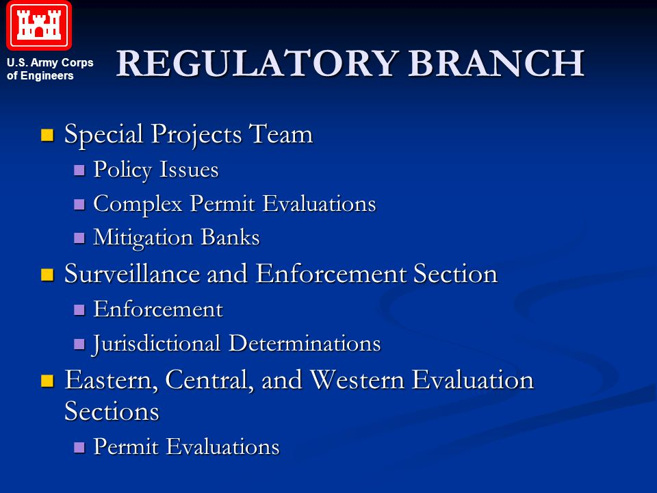 U.S. Army Corps of Engineers REGULATORY BRANCH Special Projects Team Special Projects Team Policy Issues Policy Issues Complex Permit Evaluations Comp