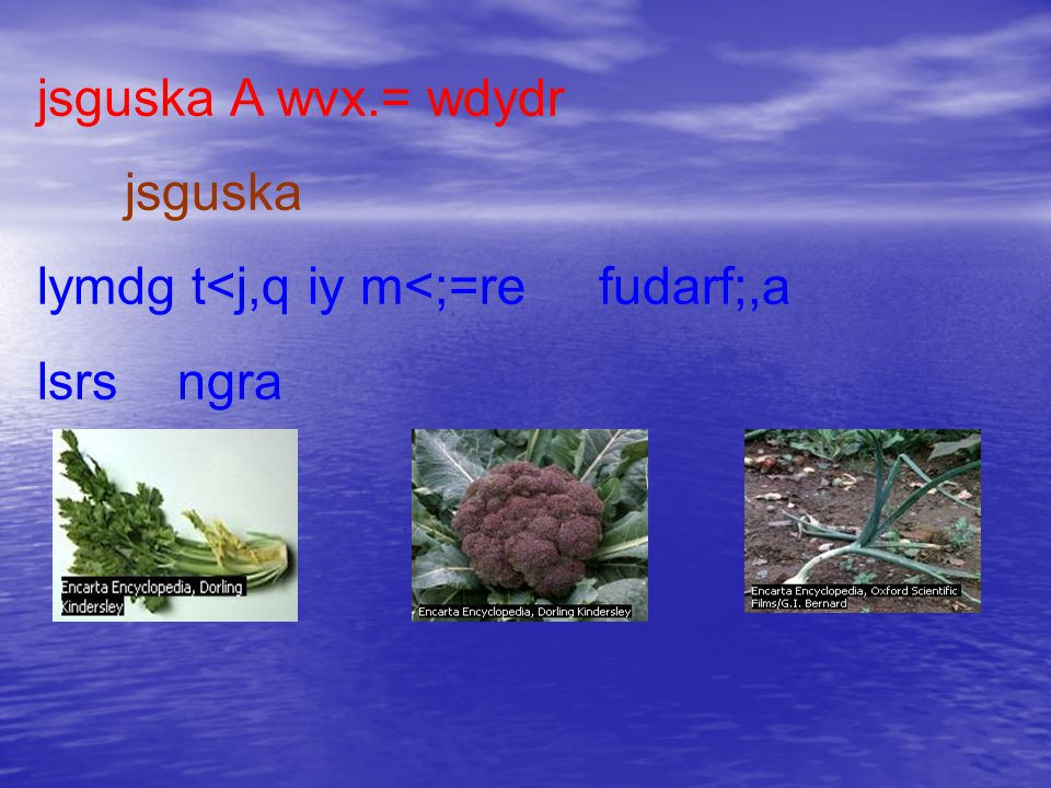 jsguska A wvx.= wdydr jsguska lymdg t<j,q iy m<;=re fudarf;,a lsrs ngra