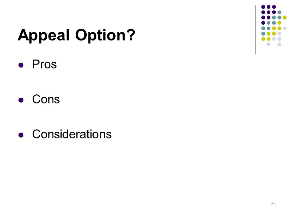 20 Appeal Option Pros Cons Considerations