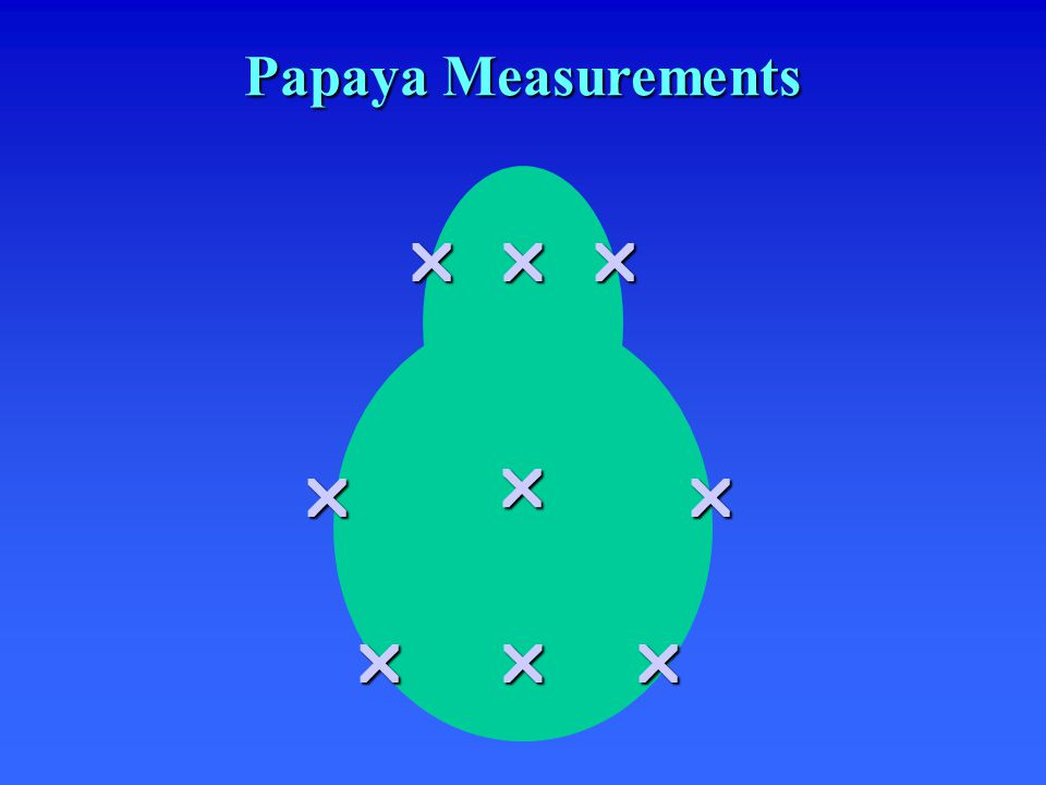  Papaya Measurements   