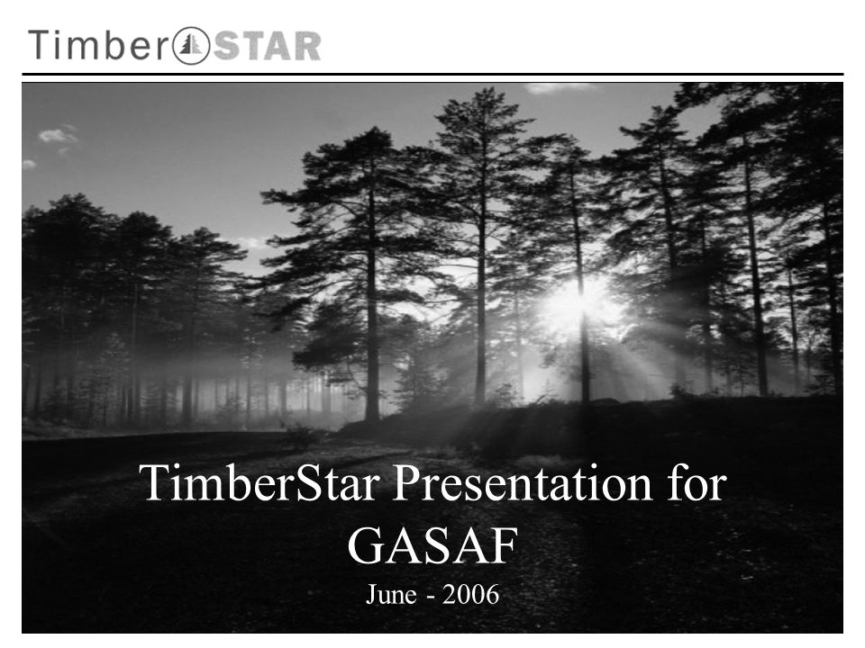 TimberStar Presentation for GASAF June - 2006
