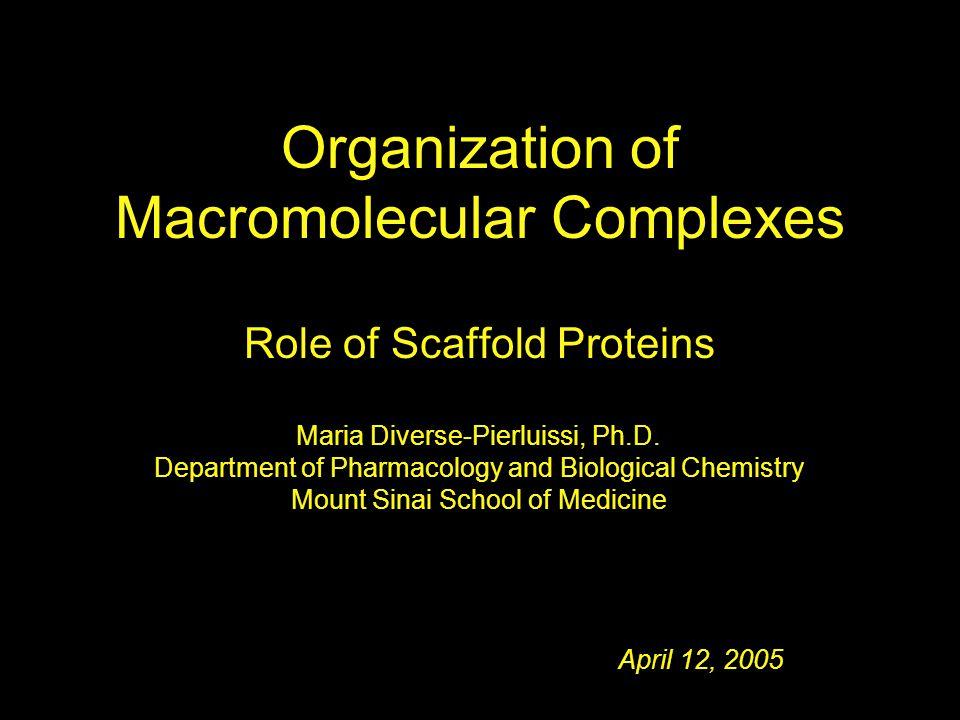 April 12, 2005 Maria Diverse-Pierluissi, Ph.D.