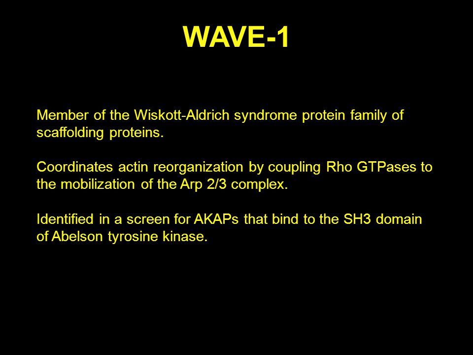 Summary a.Scaffold proteins can create substrate specificity (i.e.