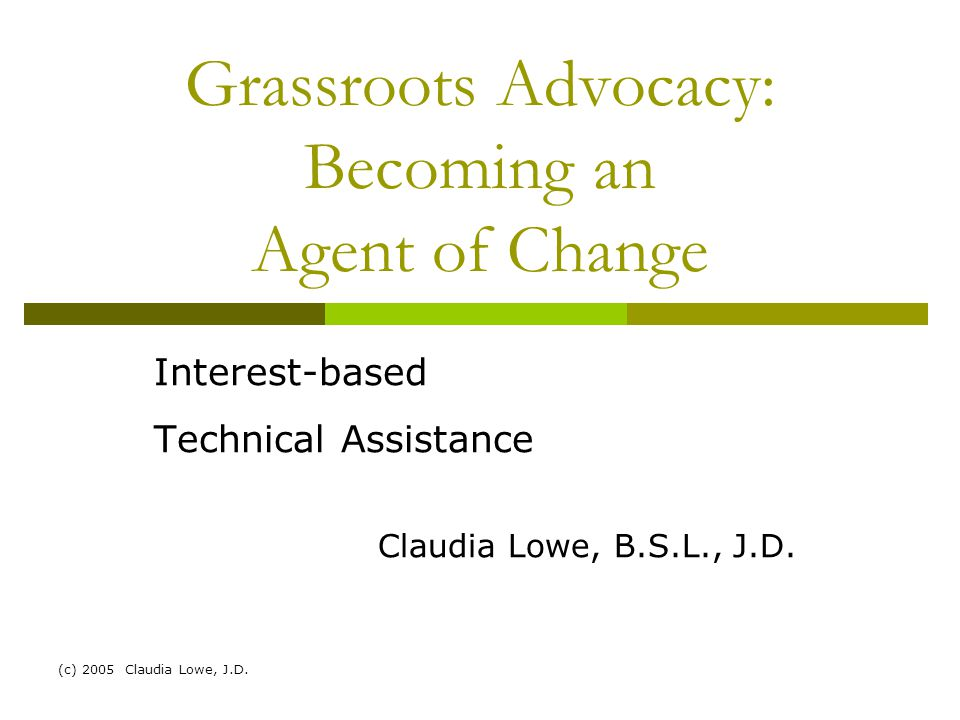 (c) 2005 Claudia Lowe, J.D.Introduction  Claudia Lowe, J.D.