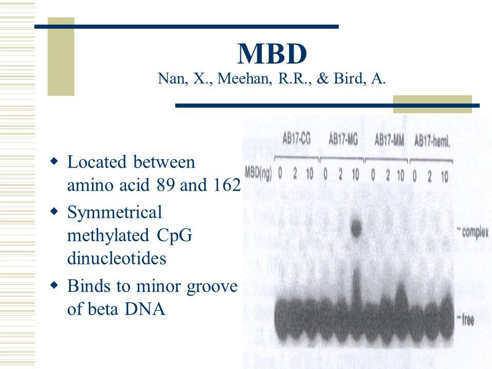 MBD Nan, X., Meehan, R.R., & Bird, A.