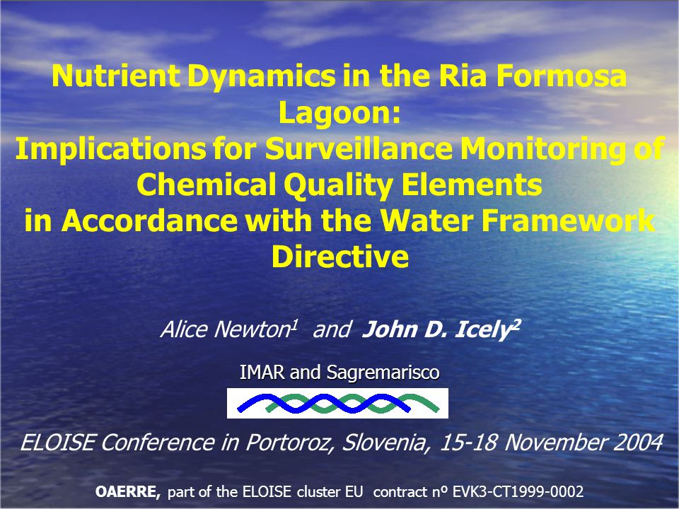 Nutrient Dynamics in the Ria Formosa Lagoon: Implications for Surveillance Monitoring of Chemical Quality Elements in Accordance with the Water Framew