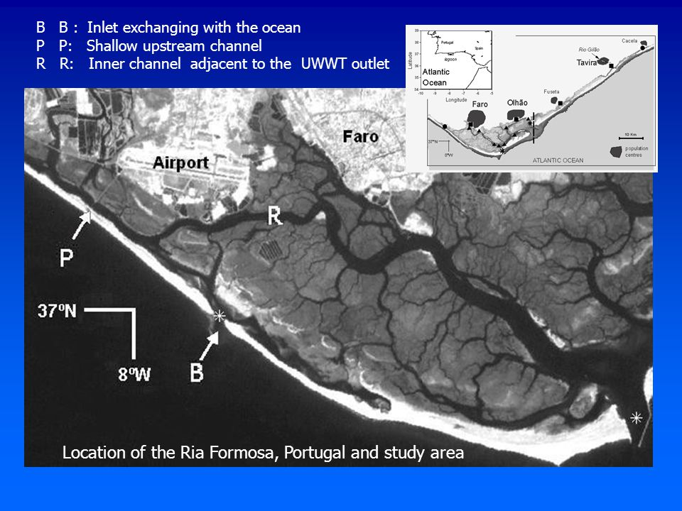 B B : Inlet exchanging with the ocean P P: Shallow upstream channel R R: Inner channel adjacent to the UWWT outlet Location of the Ria Formosa, Portug