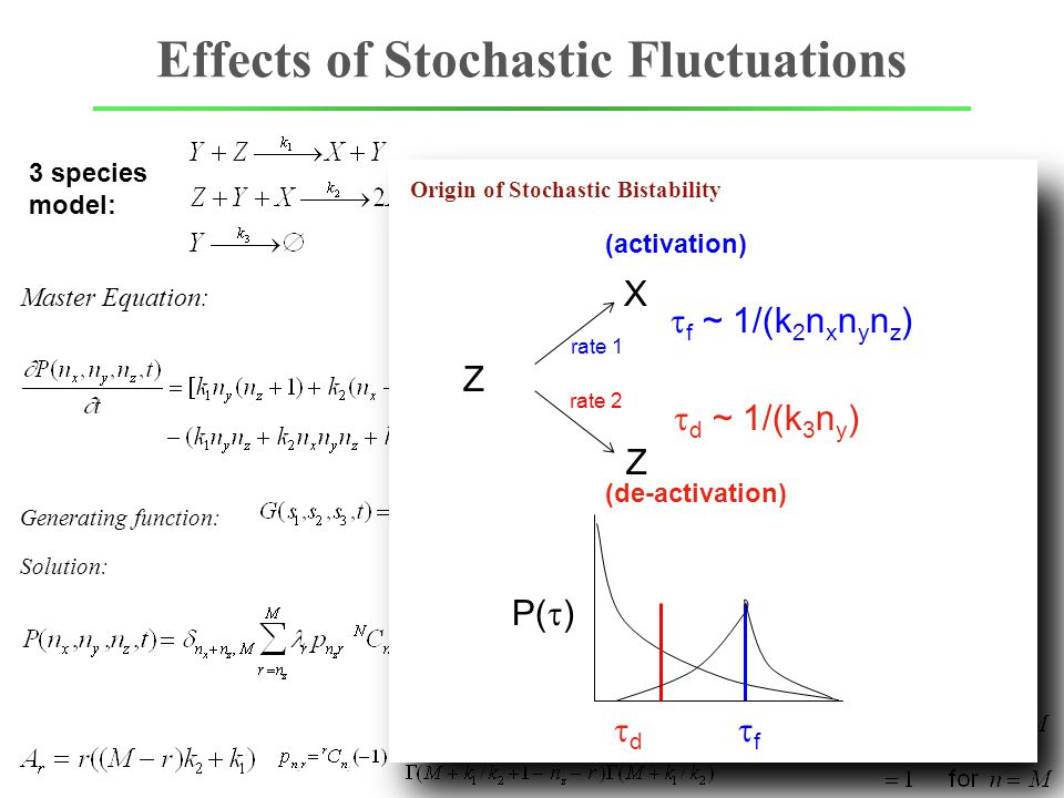 Effects of Stochastic Fluctuations Master Equation: Exactly Solvable 3 species model: Generating function: Solution: [X]+[Z]=M=const Origin of Stochas