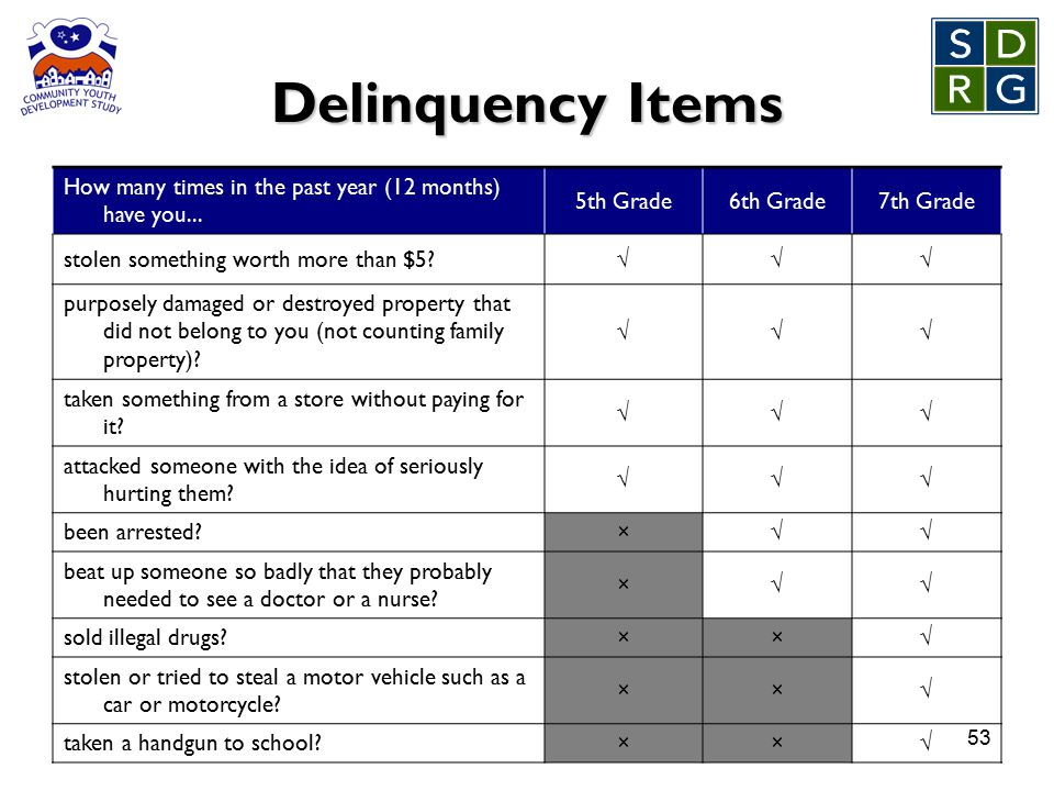 53 Delinquency Items How many times in the past year (12 months) have you...