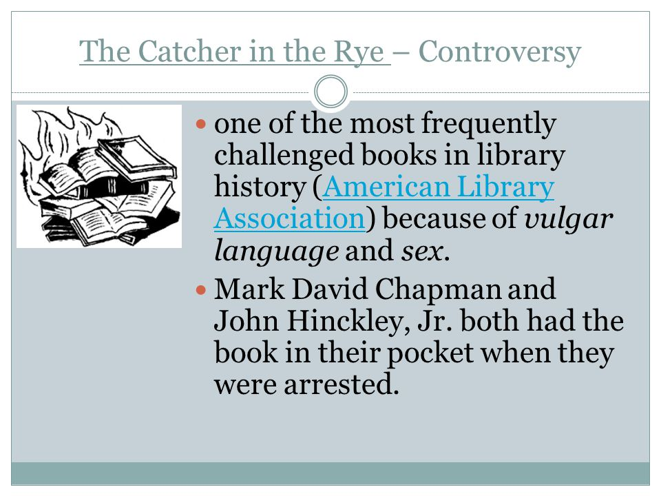 The Catcher in the Rye – the Plot This book tells the story of a teenager expelled from his high school and his 48 hour journey across NYC in the 50s This book deals with school, alcohol, sex, teachers, music, family, hypocrisy and being a teenager.