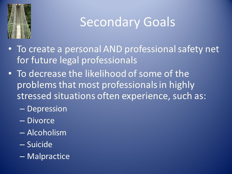 Secondary Goals To create a personal AND professional safety net for future legal professionals To decrease the likelihood of some of the problems tha