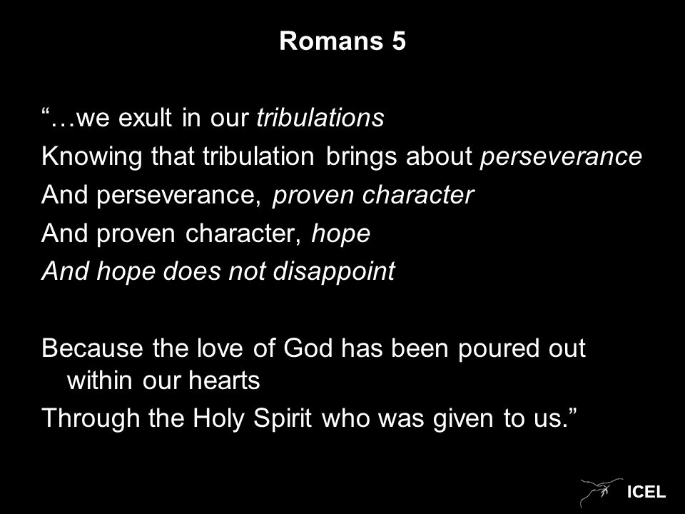 ICEL Romans 5 …we exult in our tribulations Knowing that tribulation brings about perseverance And perseverance, proven character And proven character, hope And hope does not disappoint Because the love of God has been poured out within our hearts Through the Holy Spirit who was given to us.
