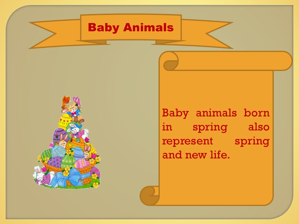 Baby Animals Baby animals born in spring also represent spring and new life.