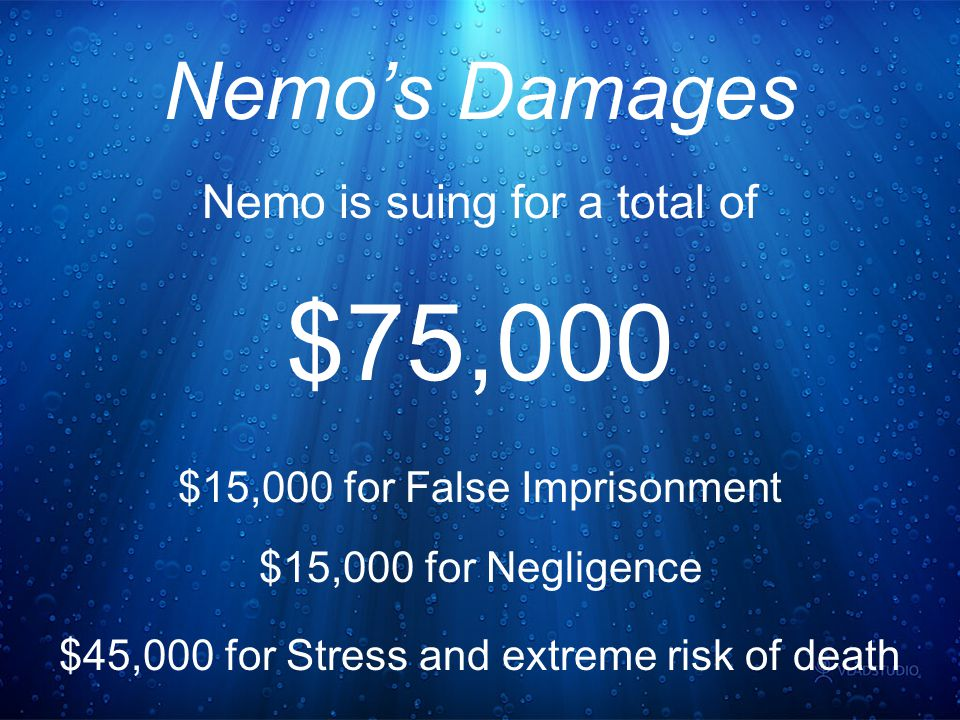 Nemo's Damages Nemo is suing for a total of $75,000 $15,000 for False Imprisonment $15,000 for Negligence $45,000 for Stress and extreme risk of death