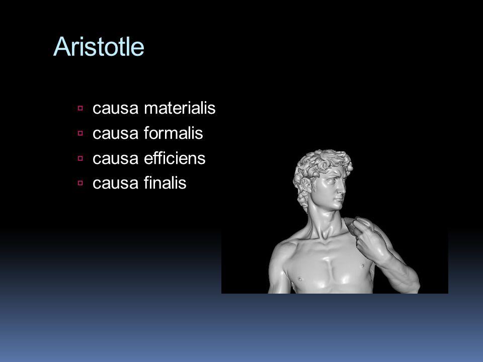 Aristotle ccausa materialis ccausa formalis ccausa efficiens ccausa finalis