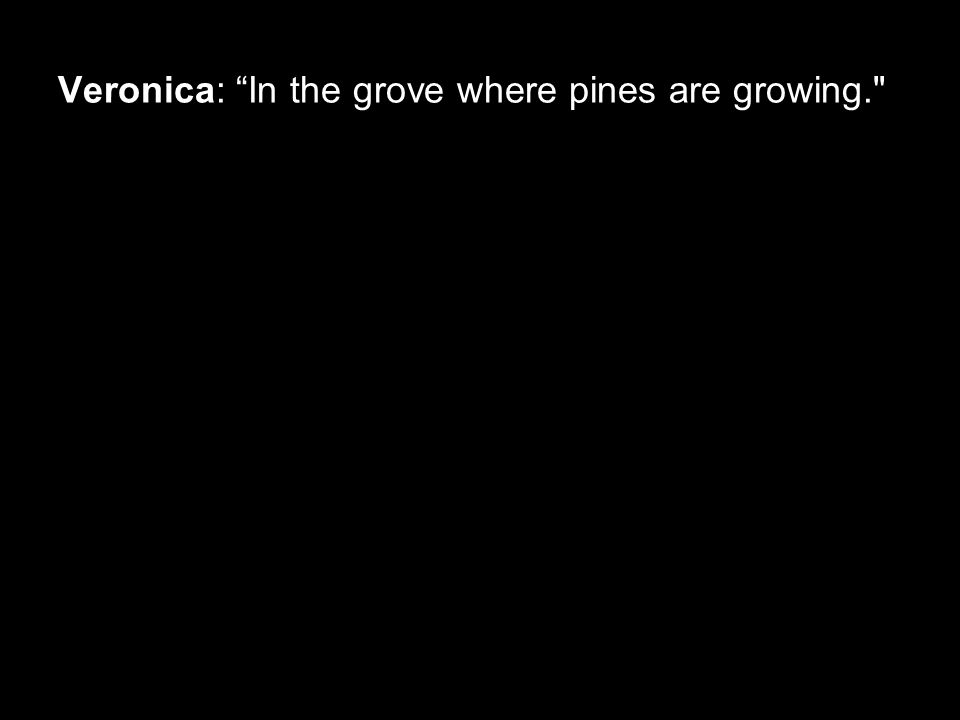 Veronica: In the grove where pines are growing.