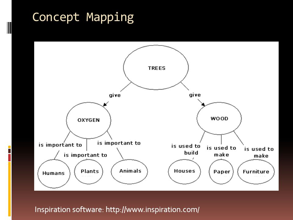 Concept Mapping Inspiration software: http://www.inspiration.com /