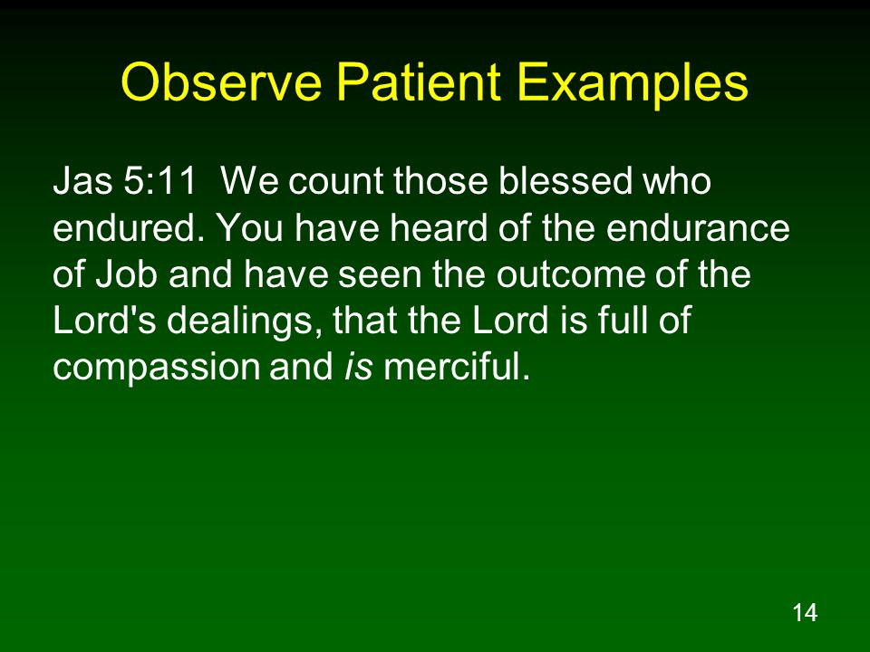 14 Observe Patient Examples Jas 5:11 We count those blessed who endured.