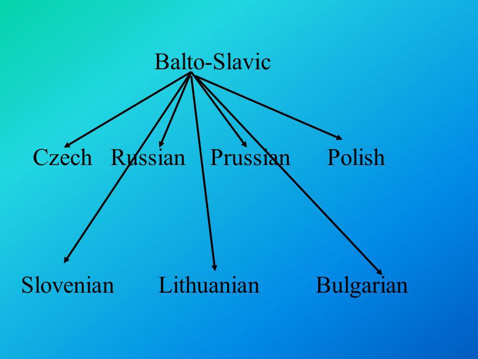 Balto-Slavic Czech Russian Prussian Polish Slovenian Lithuanian Bulgarian