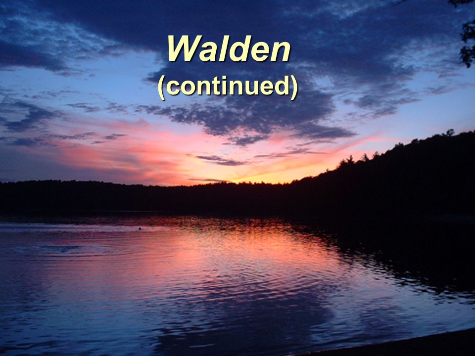 Walden (continued)