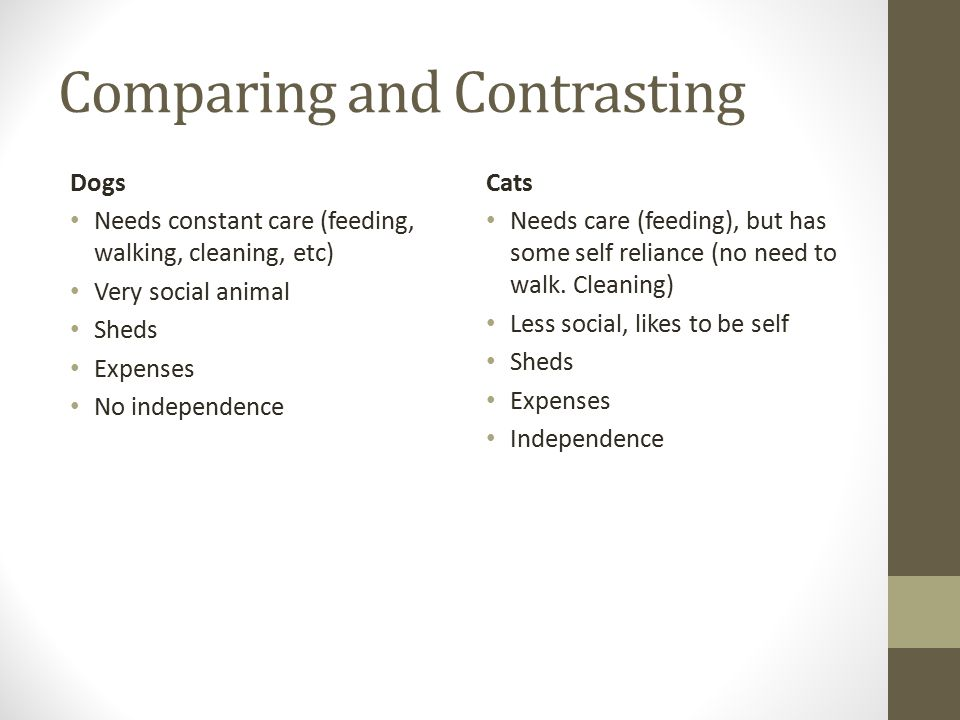 Comparing and Contrasting Dogs Needs constant care (feeding, walking, cleaning, etc) Very social animal Sheds Expenses No independence Cats Needs care (feeding), but has some self reliance (no need to walk.