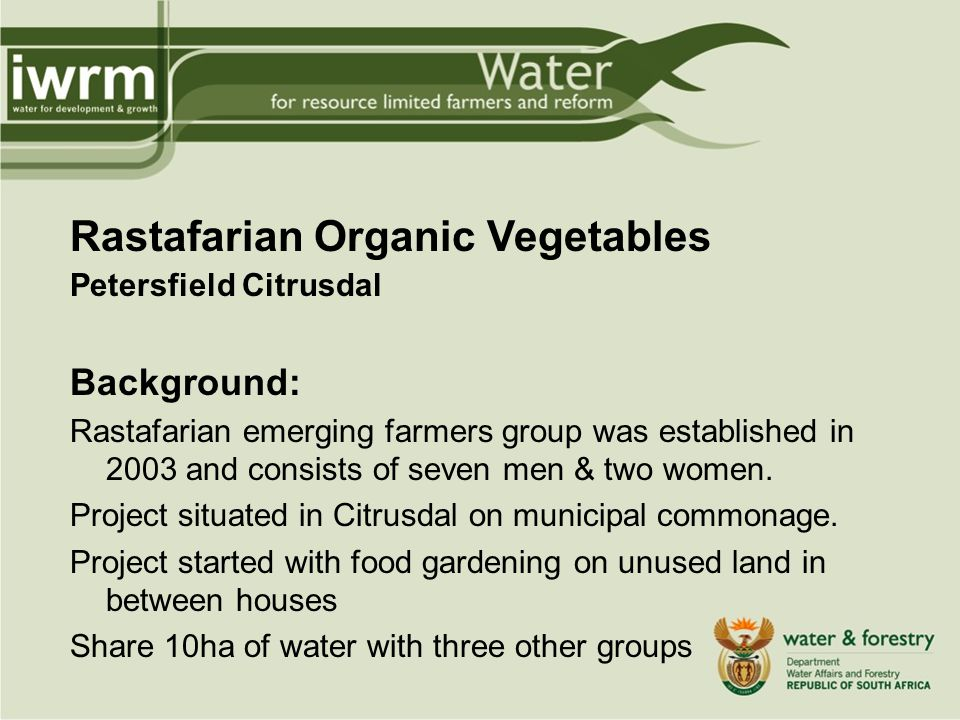 Rastafarian Organic Vegetables Petersfield Citrusdal Background: Rastafarian emerging farmers group was established in 2003 and consists of seven men & two women.