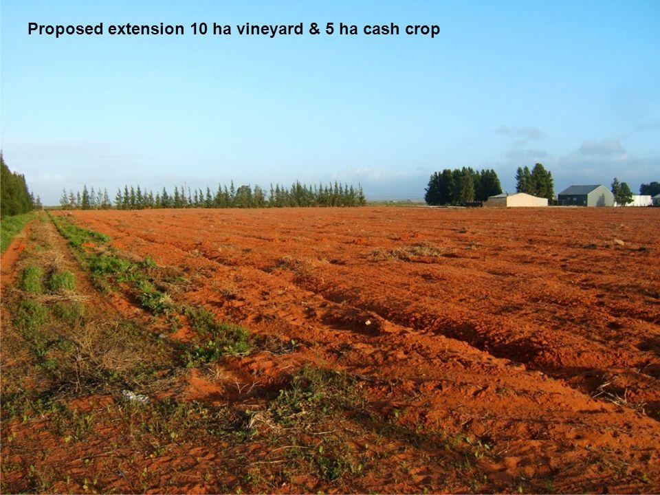 Proposed extension 10 ha vineyard & 5 ha cash crop