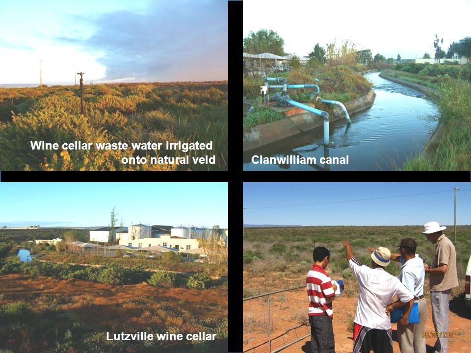 Clanwilliam canal Lutzville wine cellar Wine cellar waste water irrigated onto natural veld