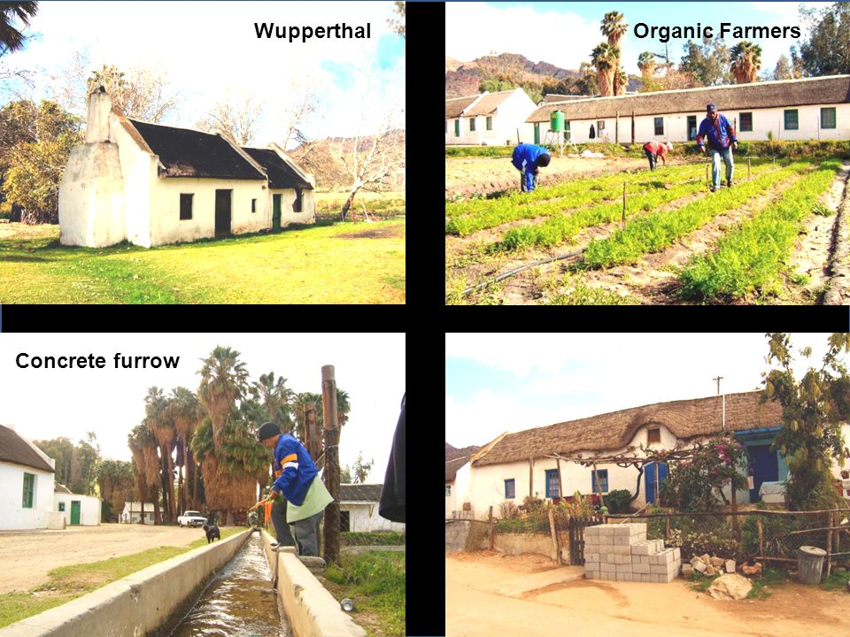 WupperthalOrganic Farmers Concrete furrow