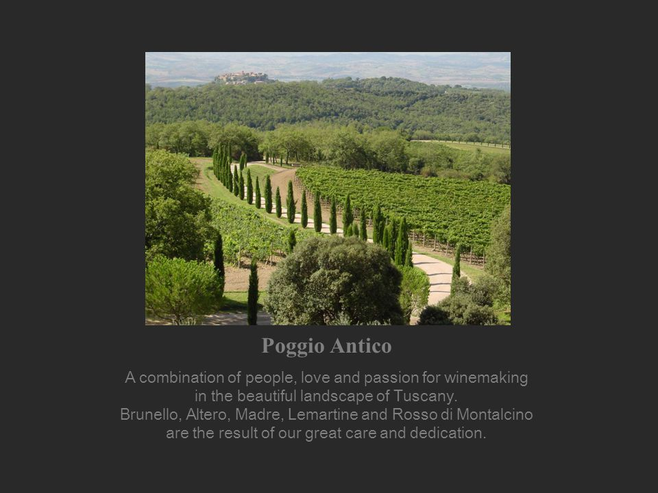 The Estate Poggio Antico is a boutique winery located in Montalcino, a small town in Tuscany, about 50 kilometers South of Siena.