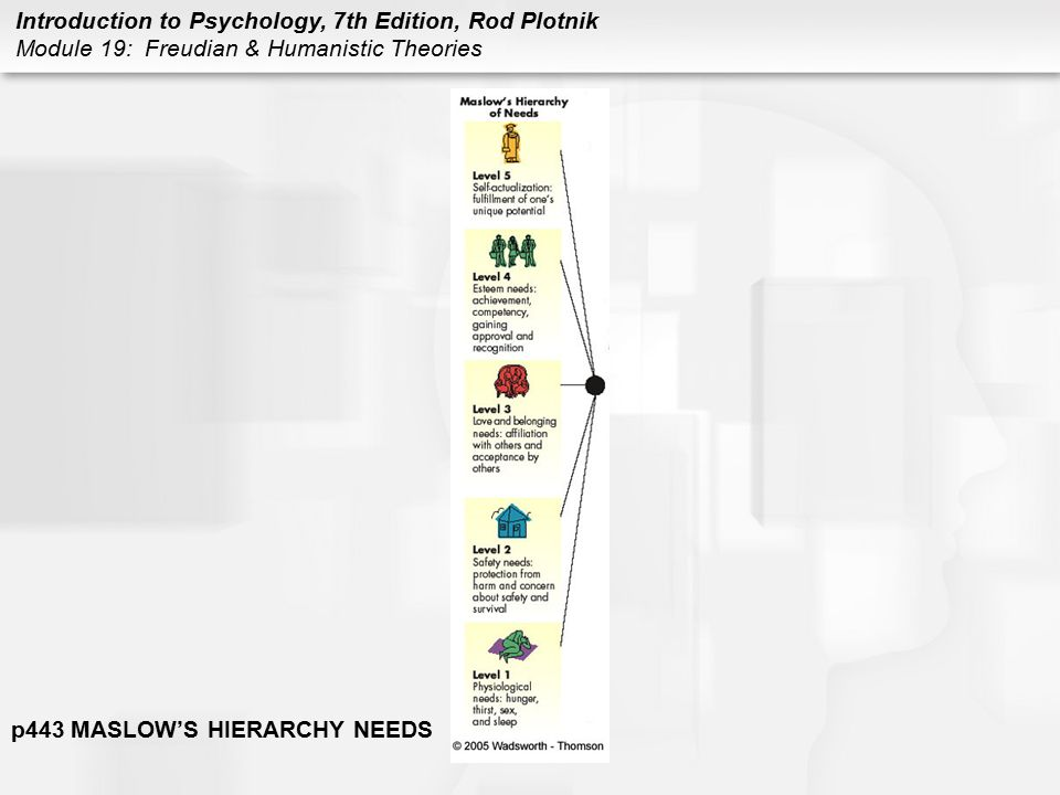 Introduction to Psychology, 7th Edition, Rod Plotnik Module 19: Freudian & Humanistic Theories p443 MASLOW'S HIERARCHY NEEDS