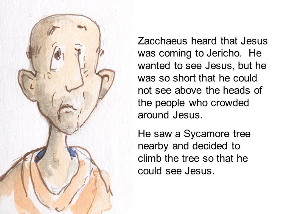 Zacchaeus heard that Jesus was coming to Jericho.