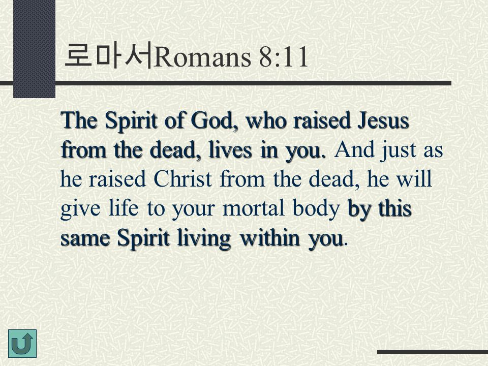 로마서 Romans 8:11 The Spirit of God, who raised Jesus from the dead, lives in you.