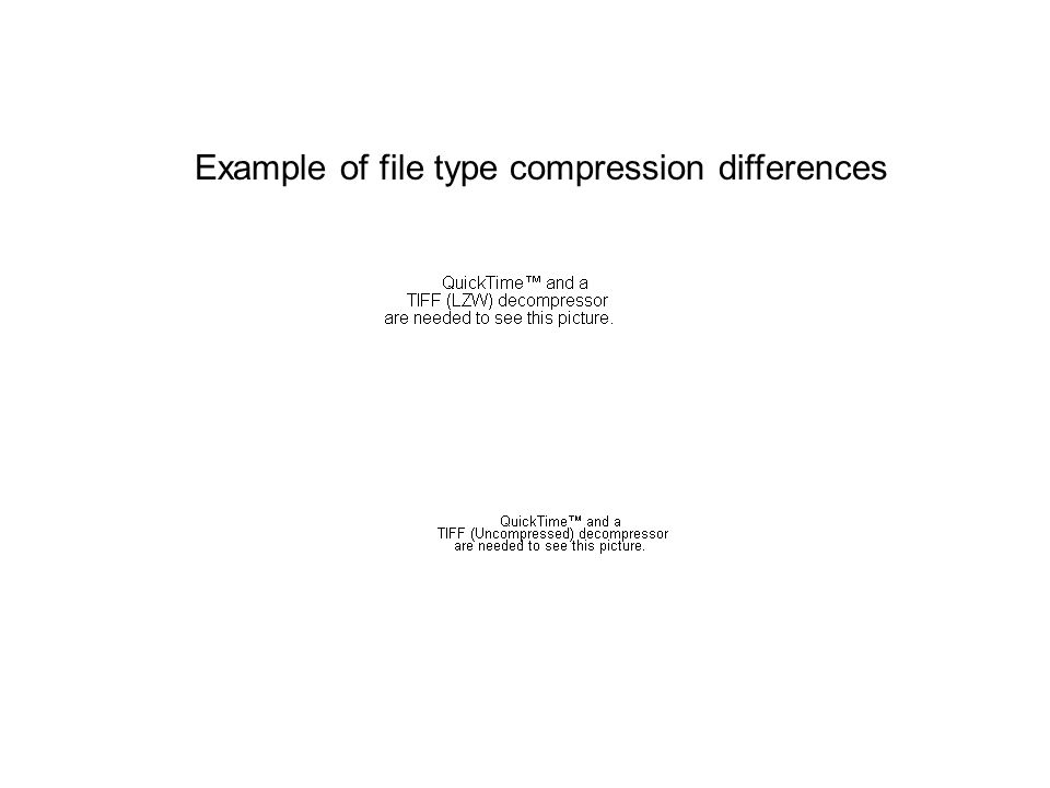 Example of file type compression differences