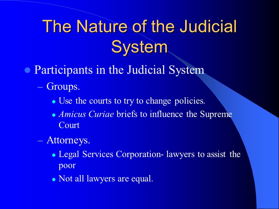 The Nature of the Judicial System Participants in the Judicial System – Groups. Use the courts to try to change policies. Amicus Curiae briefs to infl