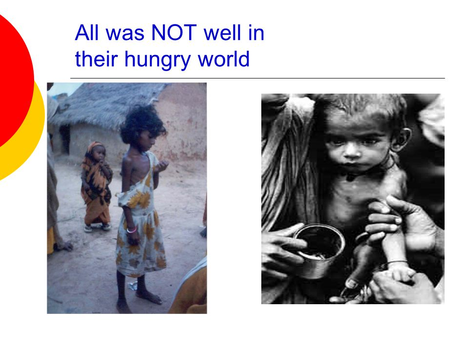 All was NOT well in their hungry world
