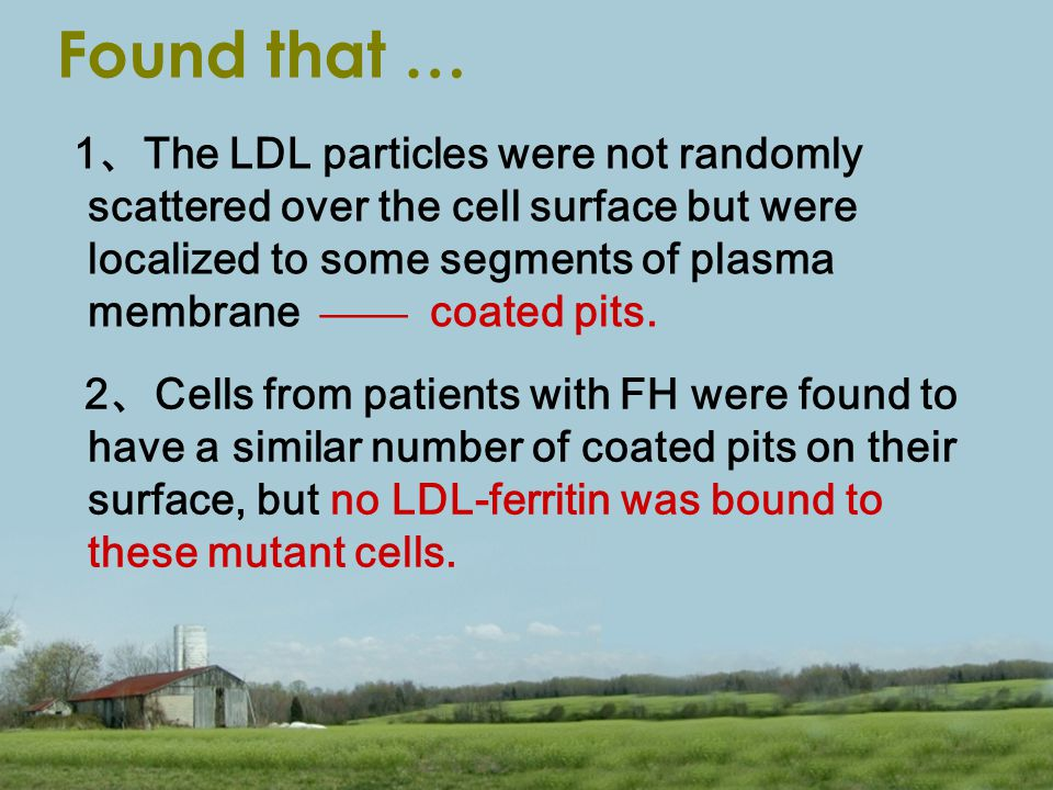 Found that … 1 、 The LDL particles were not randomly scattered over the cell surface but were localized to some segments of plasma membrane —— coated pits.