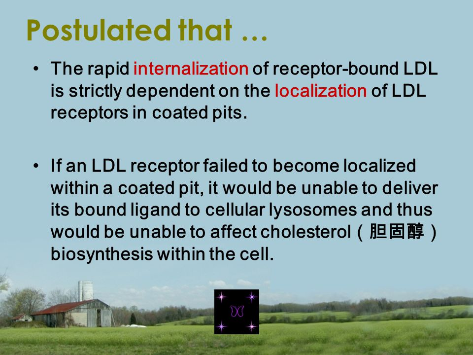 Postulated that … The rapid internalization of receptor-bound LDL is strictly dependent on the localization of LDL receptors in coated pits.
