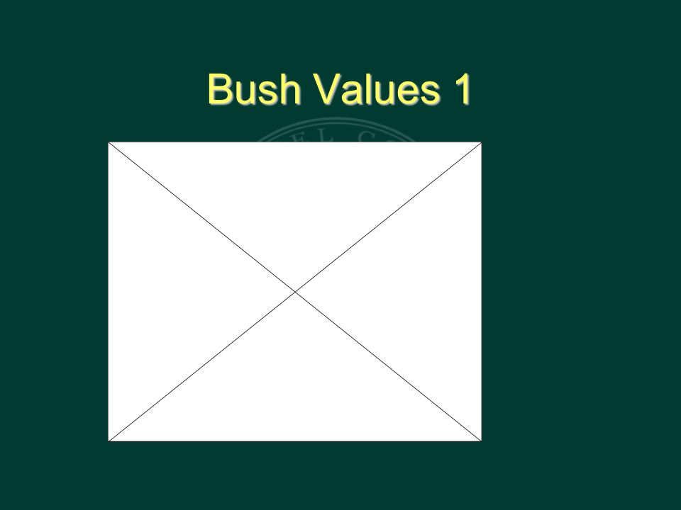 Bush Values 1
