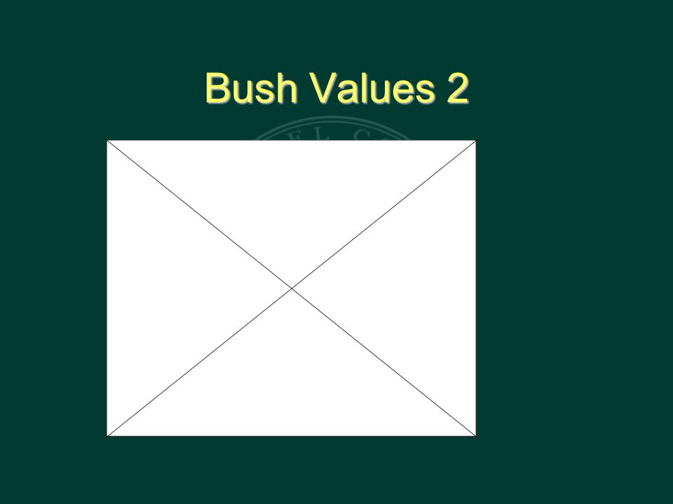 Bush Values 2