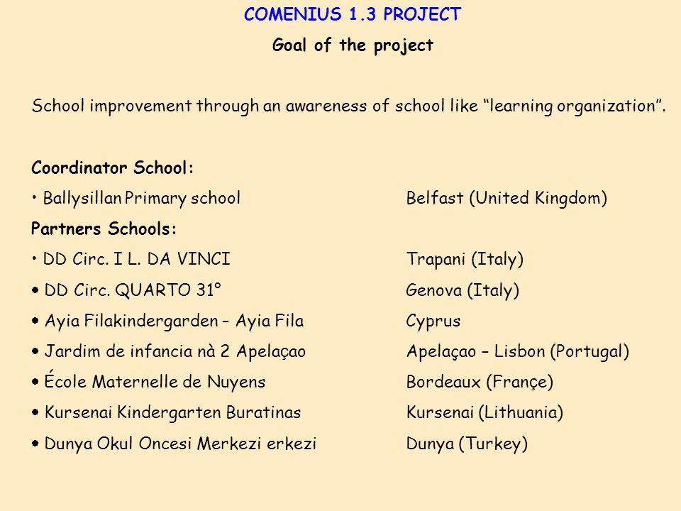 COMENIUS 1.3 PROJECT Goal of the project School improvement through an awareness of school like learning organization .