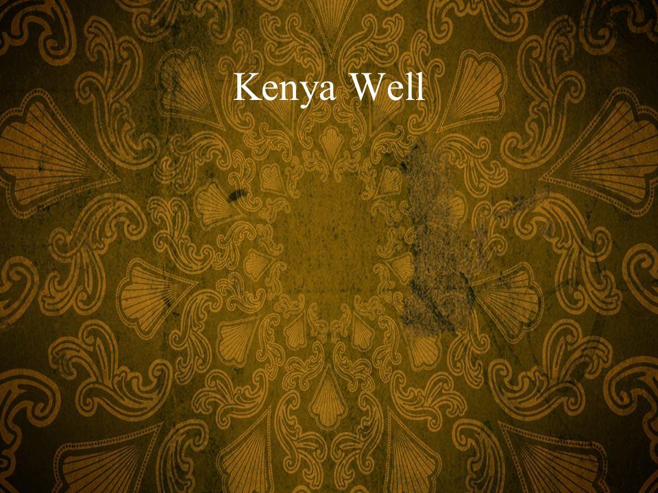Kenya Well